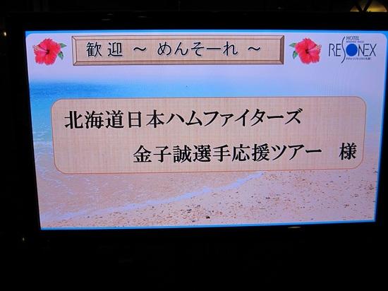 IMG_7978-1.jpg