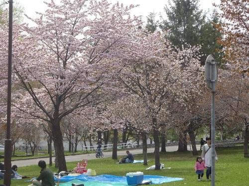 農試公園2.jpg