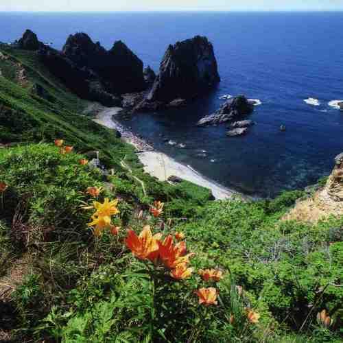 1夏の島武意.jpg