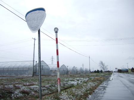 201211246.jpg