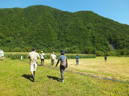 トウキビ畑1.JPG