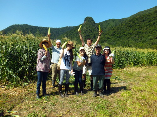 トウキビ畑5.JPG