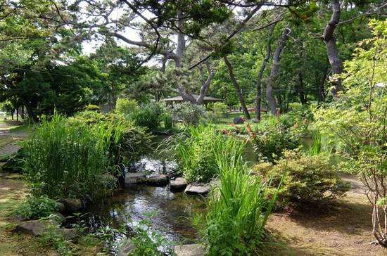 14関川家別荘庭.JPG