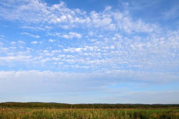 3サロベツ湿原.JPG