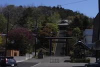 RIMG2531神社全景.JPG