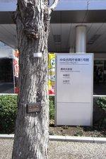 03農水桂.JPG
