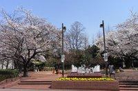 12公園.JPG