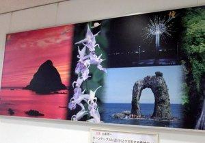 00奥尻島.JPGのサムネール画像