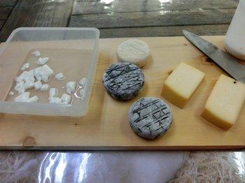 08特別チーズ.JPG